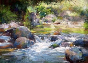 Rivière dans la lumière