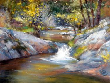 ruisseau-de-printemps.jpg